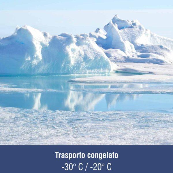 Trasporto_congelato