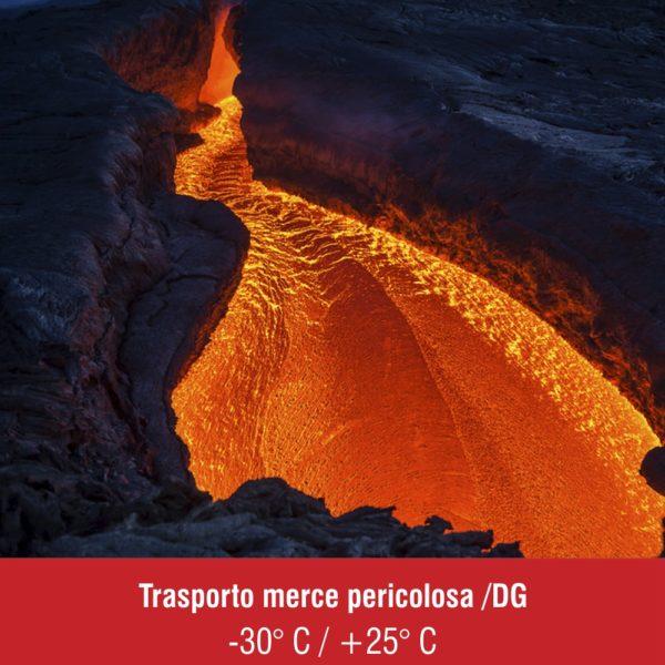 Trasporto_pericoloso_Dangerouse_goods