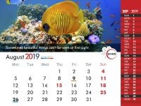 PHSE_Calendar_2019_9